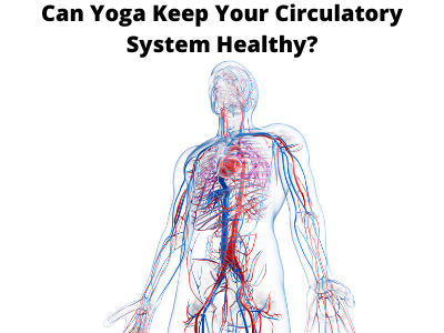 Copy of Can Yoga Keep Your Circulatory System Healthy_
